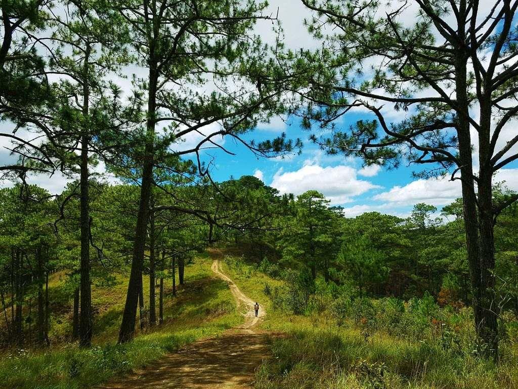 10 tour trekking săn mây được nhiều người lựa chọn 4