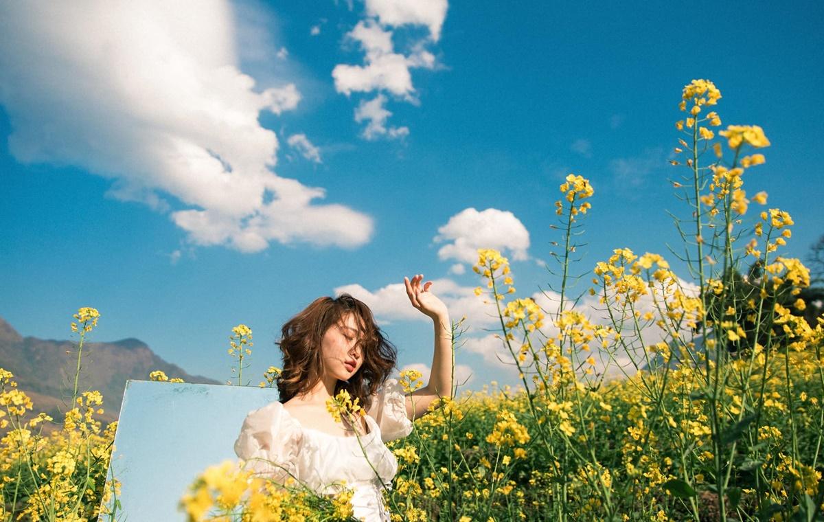 mùa hoa cải sapa