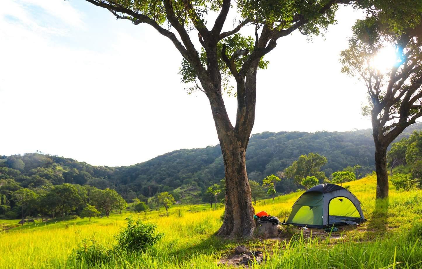 những cung đường trekking ở miền trung đốn tim du khách 2
