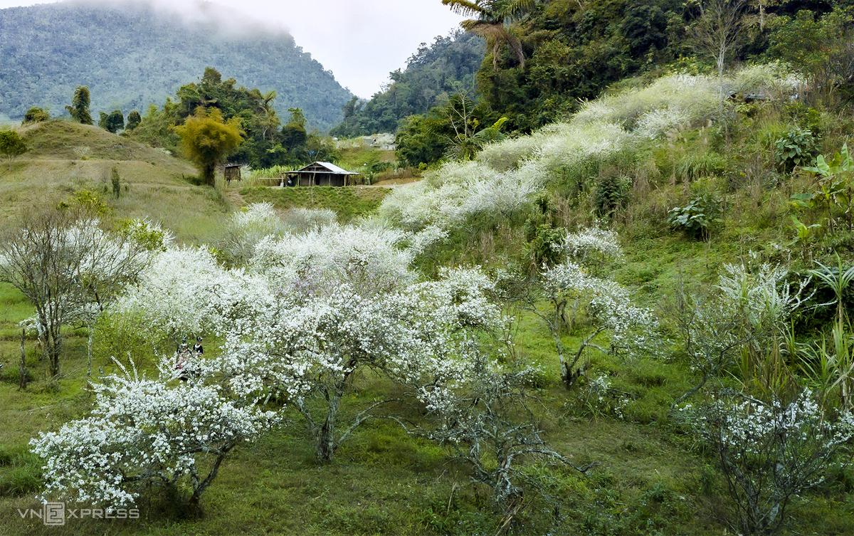 những cung đường trekking ở miền trung đốn tim du khách 5