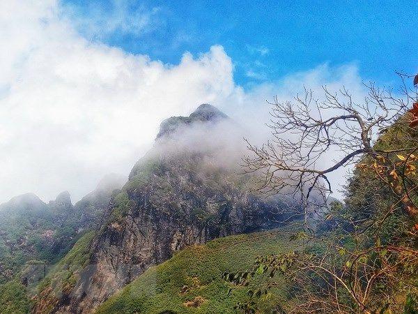 trekking núi ngũ chỉ sơn lào cai